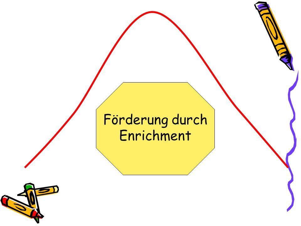 Förderung durch Enrichment