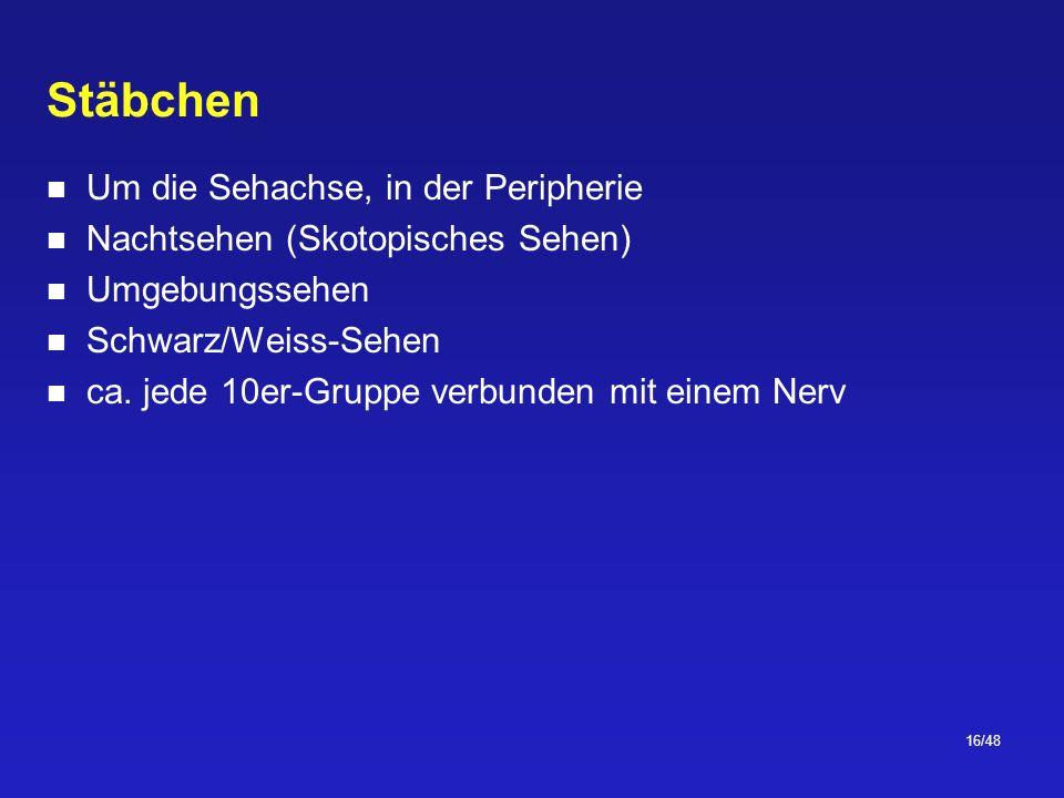 16/48 Stäbchen Um die Sehachse, in der Peripherie Nachtsehen (Skotopisches Sehen) Umgebungssehen Schwarz/Weiss-Sehen ca.