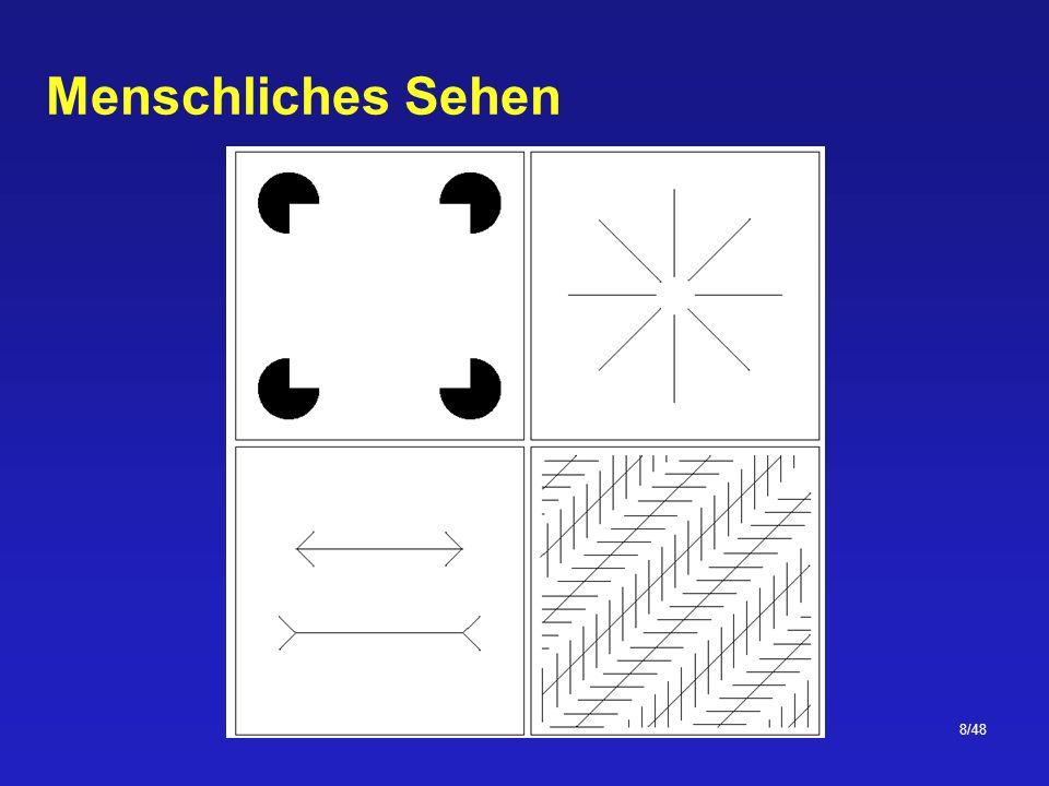 29/48 Rasterung und Quantisierung Unter Rasterung (oder Abtastung) versteht man die Aufteilung des Bildes in festgelegten Abständen (Diskretisierung der räumlichen Variablen x und y) Unter Quantisierung versteht man die Bewertung der Helligkeit eines Pixels mittels einer festgelegten Grauwertmenge (Diskretisierung der Intensitätsvariable)
