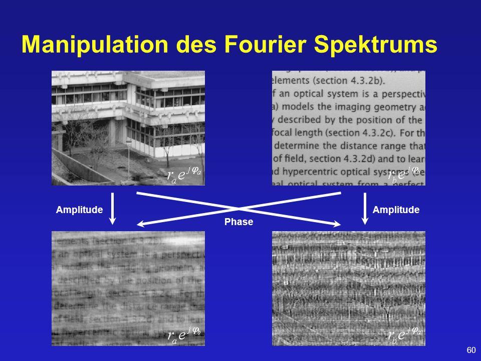 60 Manipulation des Fourier Spektrums Amplitude Phase