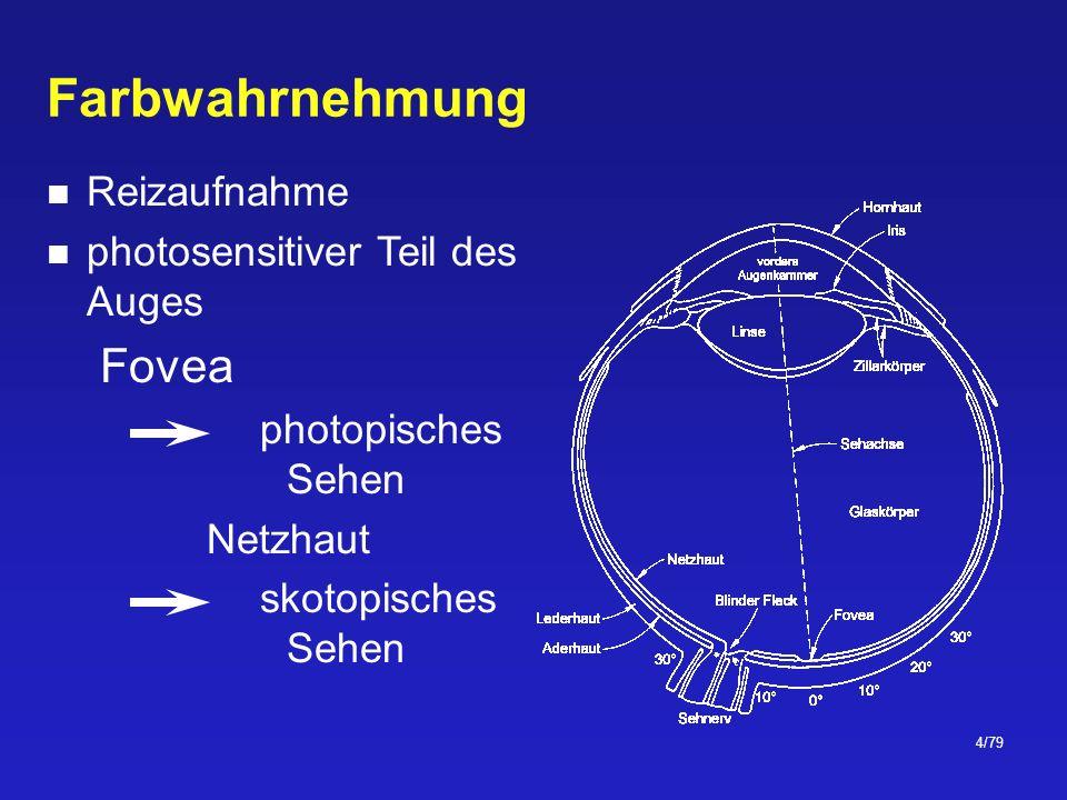 35/79 Schwarzer Strahler