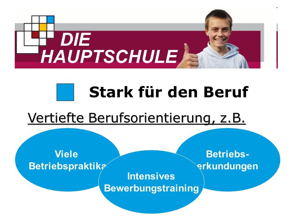 DIE HAUPTSCHULE Stark für den Beruf Vertiefte Berufsorientierung, z.B.