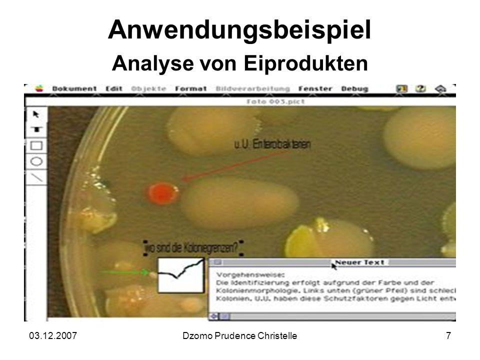 03.12.2007Dzomo Prudence Christelle7 Anwendungsbeispiel Analyse von Eiprodukten