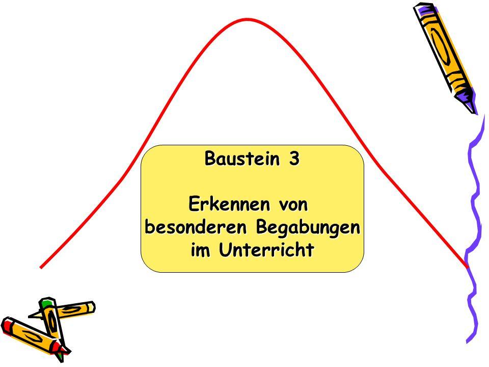 Baustein 3 Erkennen von besonderen Begabungen im Unterricht