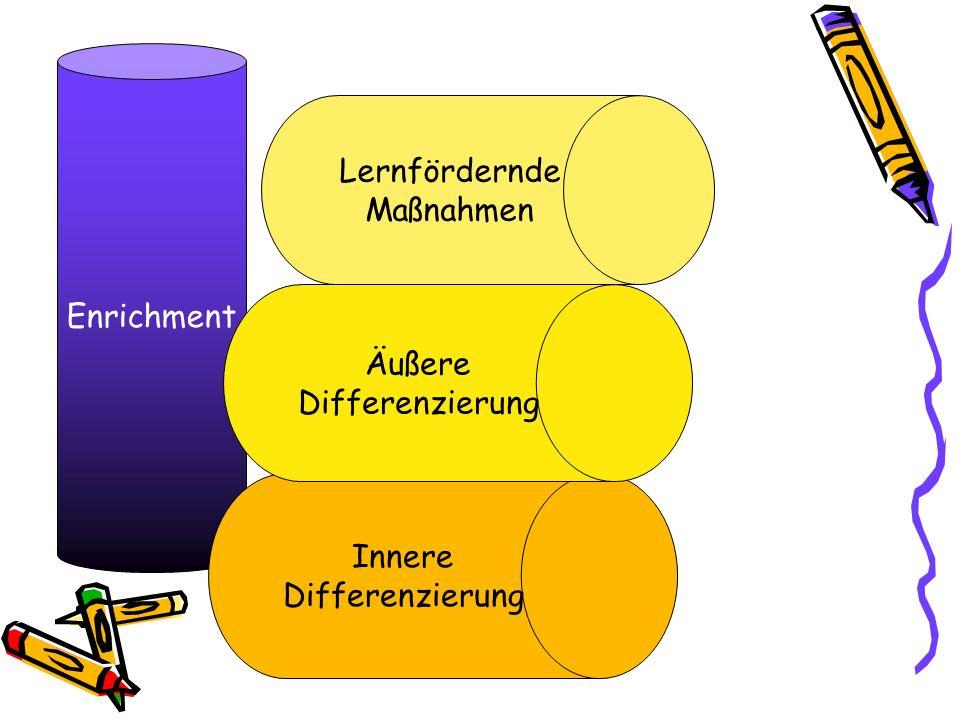 Enrichment Innere Differenzierung Äußere Differenzierung Lernfördernde Maßnahmen