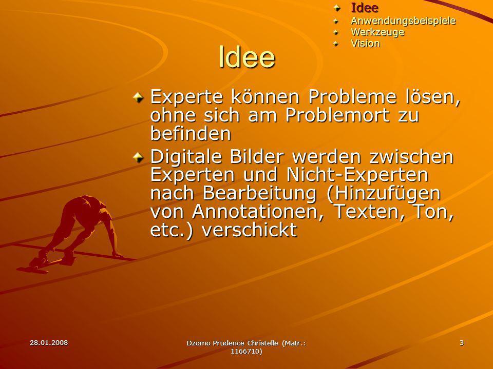 28.01.2008 Dzomo Prudence Christelle (Matr.: 1166710) 3 Idee Experte können Probleme lösen, ohne sich am Problemort zu befinden Digitale Bilder werden