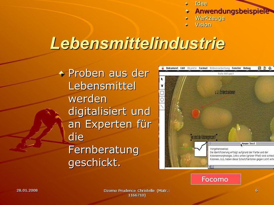 28.01.2008 Dzomo Prudence Christelle (Matr.: 1166710) 6 Lebensmittelindustrie Proben aus der Lebensmittel werden digitalisiert und an Experten für die