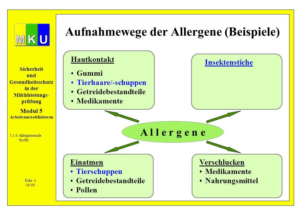 Sicherheit und Gesundheitsschutz in der Milchleistungs- prüfung A l l e r g e n e Hautkontakt Gummi Tierhaare/-schuppen Getreidebestandteile Medikamen