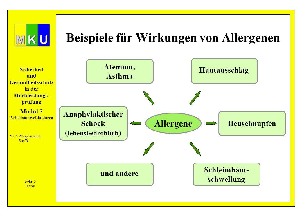 Sicherheit und Gesundheitsschutz in der Milchleistungs- prüfung Allergene Hautausschlag Atemnot, Asthma Anaphylaktischer Schock ( lebensbedrohlich ) u