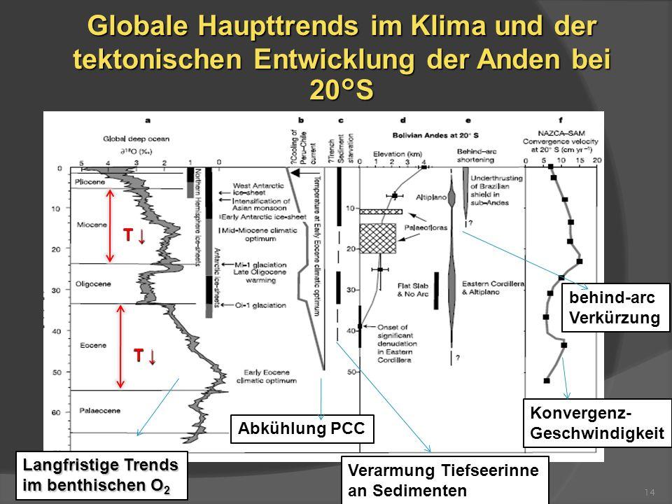Globale Haupttrends im Klima und der tektonischen Entwicklung der Anden bei 20°S 14 Abkühlung PCC Konvergenz- Geschwindigkeit Verarmung Tiefseerinne a