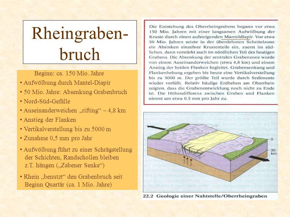 Rheingraben- bruch Beginn: ca. 150 Mio. Jahre Aufwölbung durch Mantel-Diapir 50 Mio. Jahre: Absenkung Grabenbruch Nord-Süd-Gefälle Auseinanderweichen