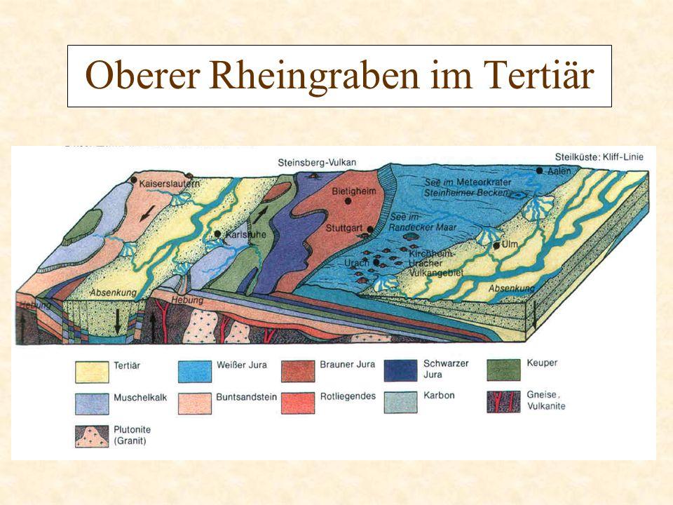 Vulkanismus Vulkane in der Region: Kaiserstuhl Vogelsberg Katzenbuckel Uracher Vulkanismus