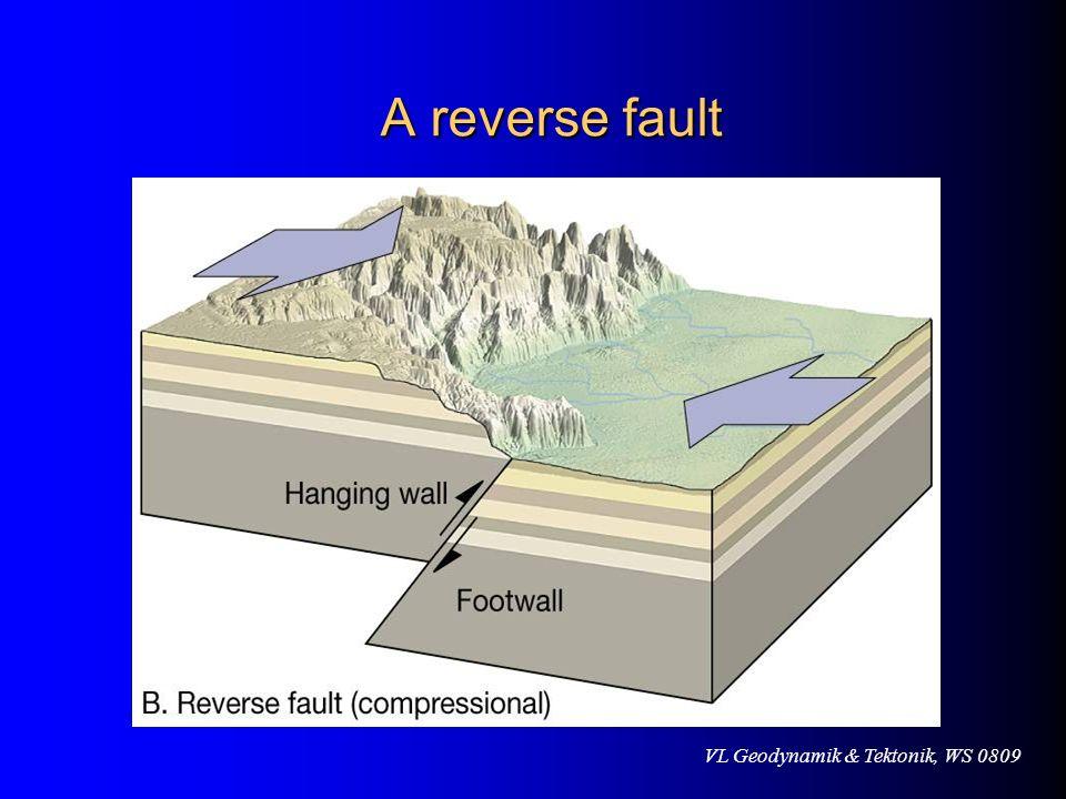 VL Geodynamik & Tektonik, WS 0809 A reverse fault A reverse fault