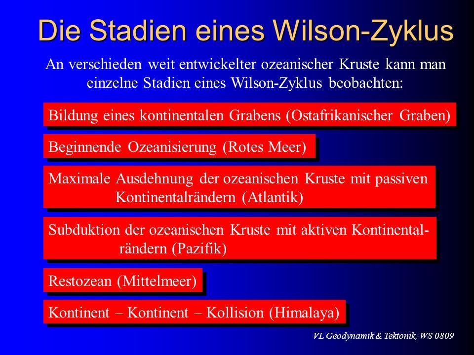 VL Geodynamik & Tektonik, WS 0809 Die Stadien eines Wilson-Zyklus An verschieden weit entwickelter ozeanischer Kruste kann man einzelne Stadien eines