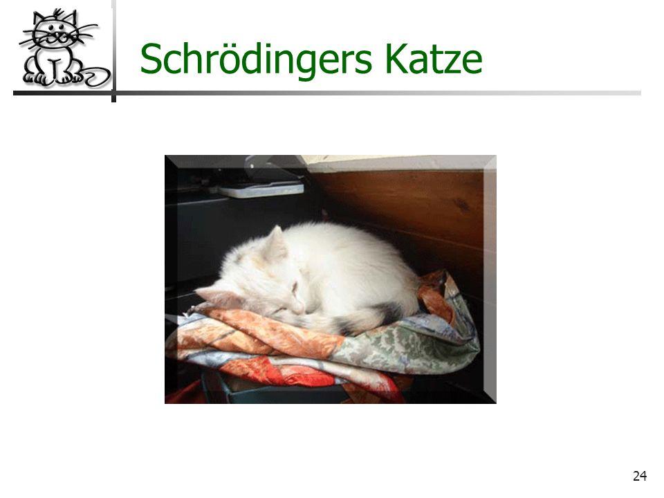 24 Wo liegt der Hund begraben? Schrödingers Katze