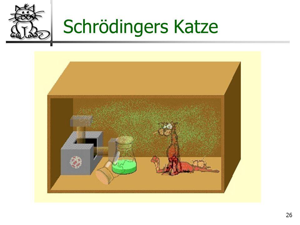26 Wo liegt der Hund begraben? Schrödingers Katze