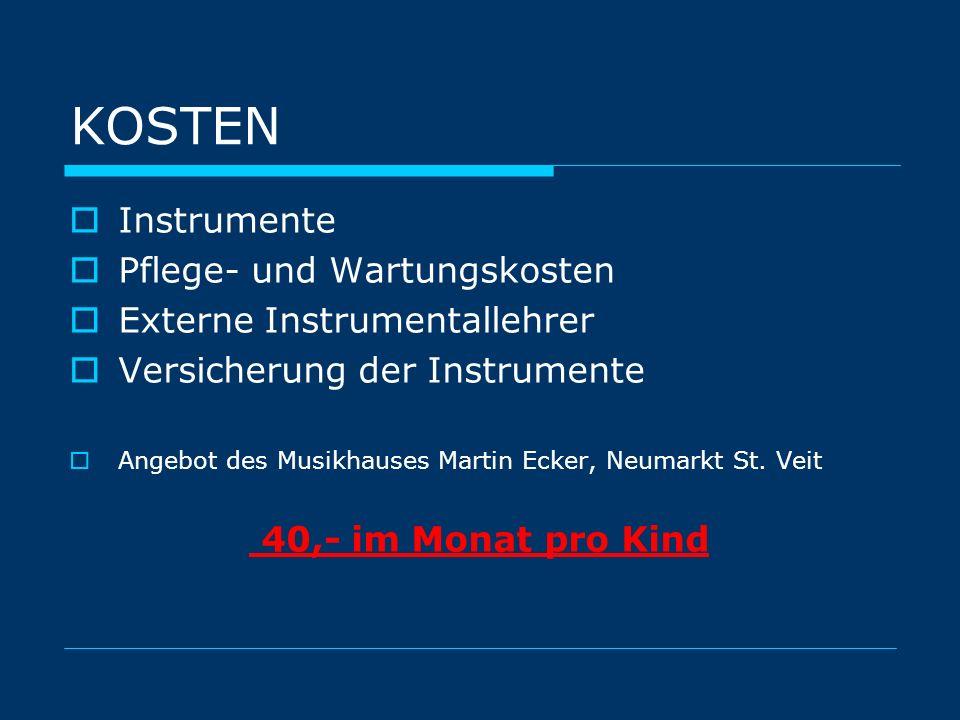 KOSTEN Instrumente Pflege- und Wartungskosten Externe Instrumentallehrer Versicherung der Instrumente Angebot des Musikhauses Martin Ecker, Neumarkt S