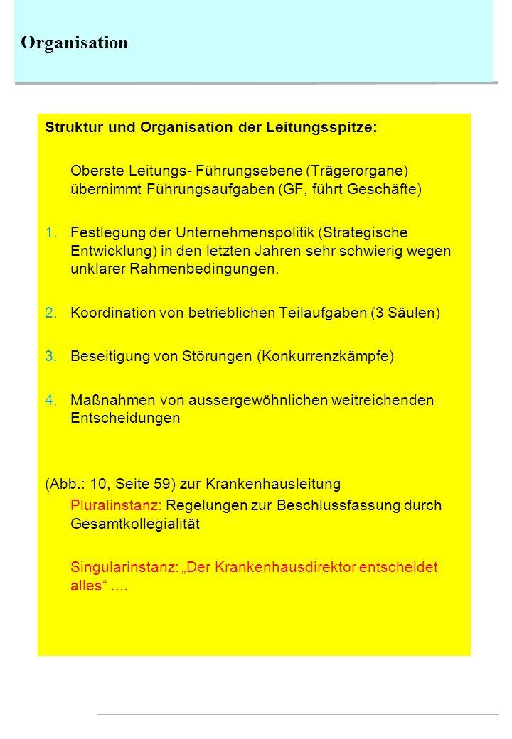 Organisation Struktur und Organisation der Leitungsspitze: Oberste Leitungs- Führungsebene (Trägerorgane) übernimmt Führungsaufgaben (GF, führt Geschä