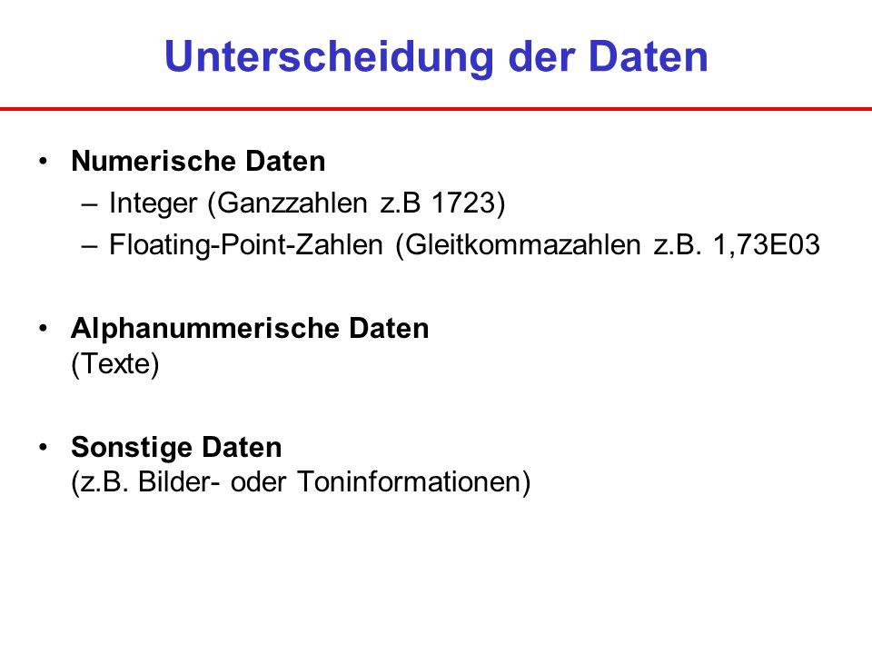 Unterscheidung der Daten Numerische Daten –Integer (Ganzzahlen z.B 1723) –Floating-Point-Zahlen (Gleitkommazahlen z.B. 1,73E03 Alphanummerische Daten