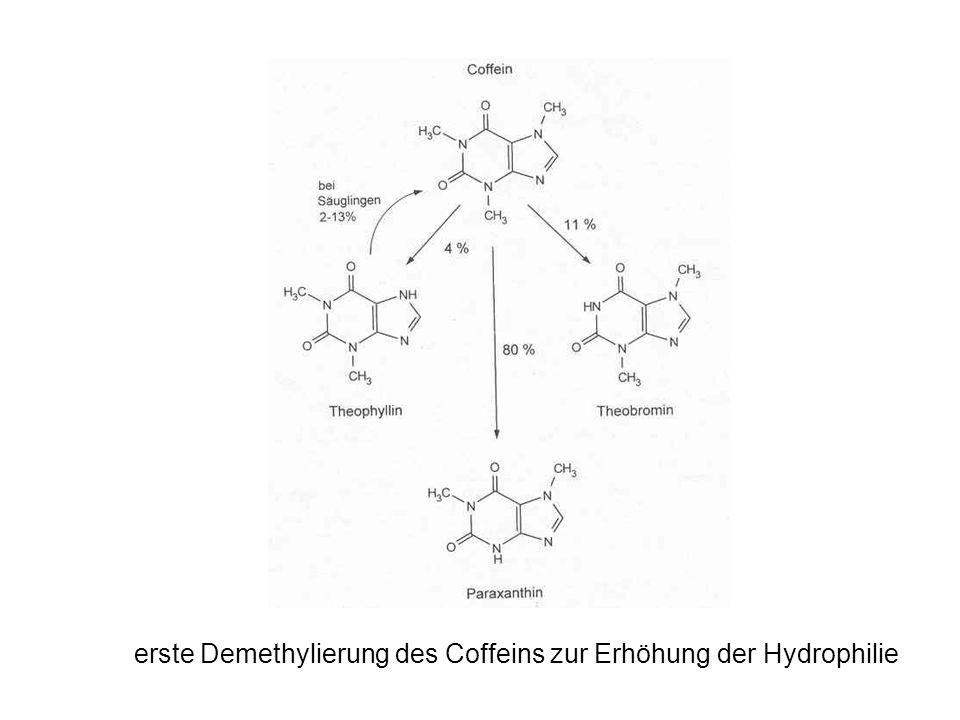 Erwünschte Wirkungen Jedem Kaffeetrinker bekannt: durch Erweiterung der Herzkranzgefäße wird der Herzrhythmus beschleunigt ( routinemäßige Verabreichung von Coffein an Säuglinge vor Operation) die Hirndurchblutung wird durch verengte Hirngefäße vermindert, Migräneschmerzen dadurch gelindert Coffein stimuliert die Psyche, ein Belohnungseffekt wird erzielt, Müdigkeit wird unterdrückt, Leistungsfähigkeit und Konzentrationsvermögen gesteigert Zudem aber auch: 1980 enthielten in den USA etwa 1000 verschreibungspflichtige und 2000 frei verkäufliche Arzneimittel Coffein; die wichtigsten davon sind Schmerzmittel, Appetitzügler und Atemstimulantien