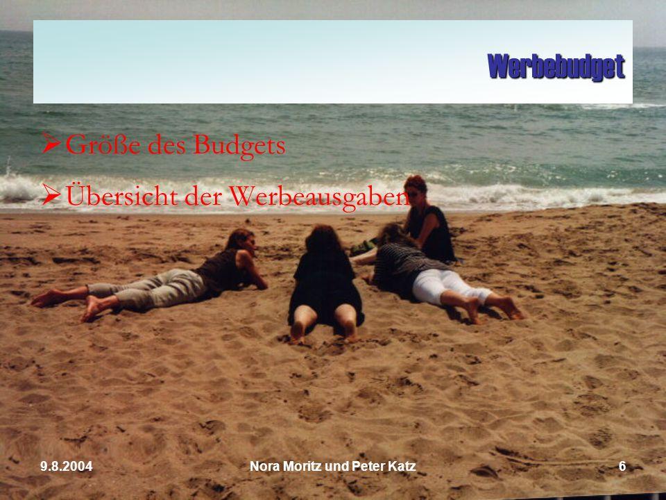 Nora Moritz und Peter Katz69.8.2004 Werbebudget Größe des Budgets Übersicht der Werbeausgaben