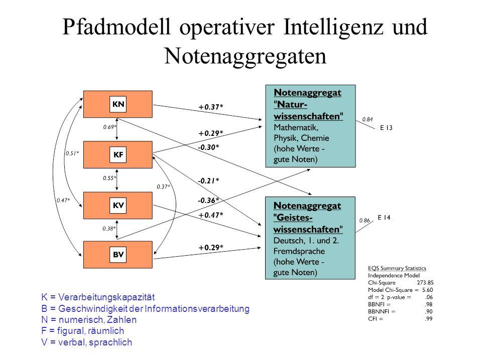 Pfadmodell operativer Intelligenz und Notenaggregaten K = Verarbeitungskapazität B = Geschwindigkeit der Informationsverarbeitung N = numerisch, Zahle
