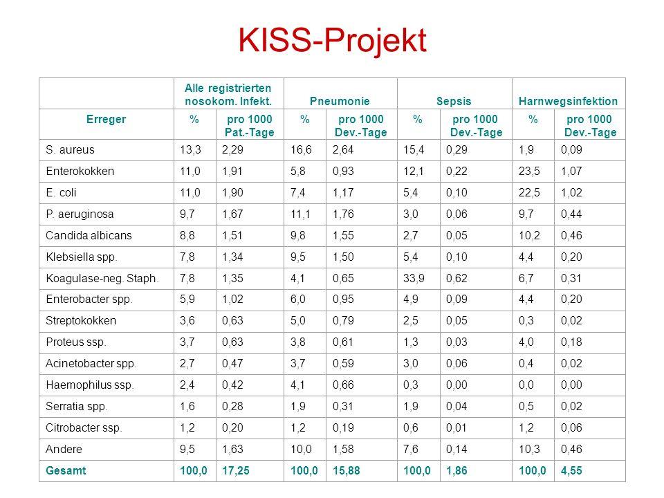 KISS-Projekt