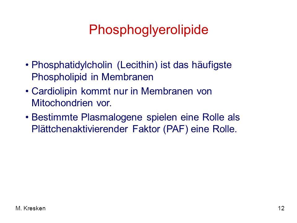 12M. Kresken Phosphoglyerolipide Phosphatidylcholin (Lecithin) ist das häufigste Phospholipid in Membranen Cardiolipin kommt nur in Membranen von Mito