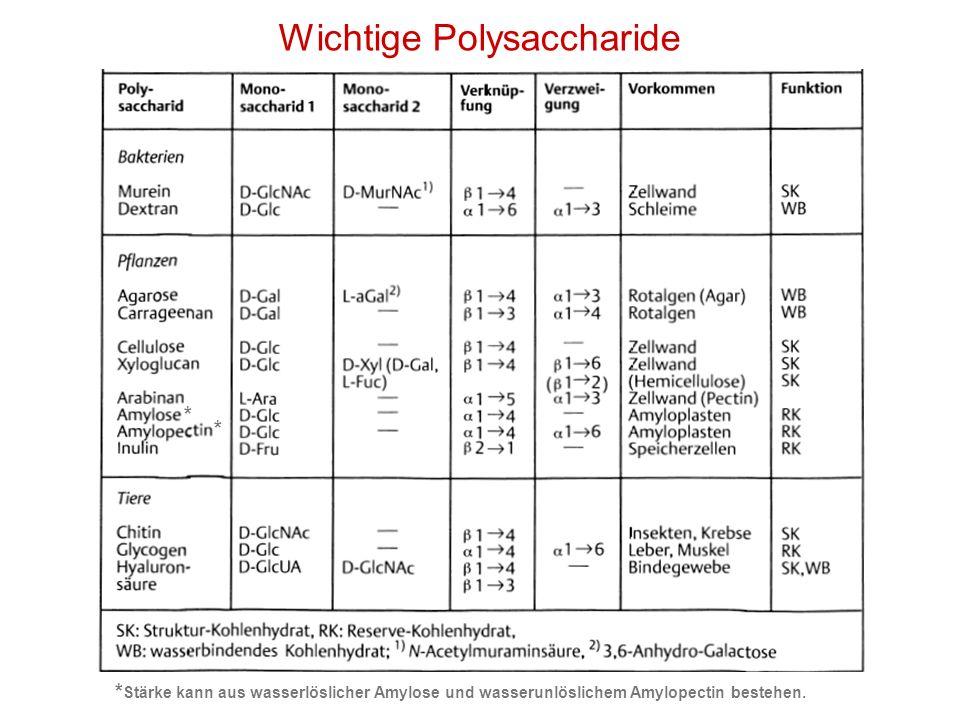 Wichtige Polysaccharide * * * Stärke kann aus wasserlöslicher Amylose und wasserunlöslichem Amylopectin bestehen.