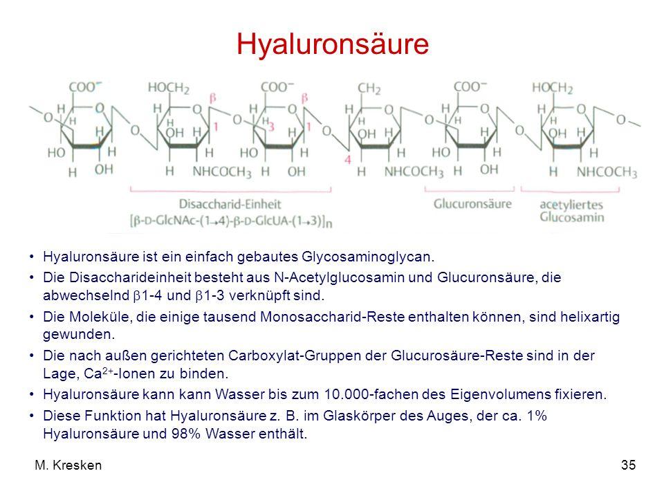 35M. Kresken Hyaluronsäure Hyaluronsäure ist ein einfach gebautes Glycosaminoglycan. Die Disaccharideinheit besteht aus N-Acetylglucosamin und Glucuro