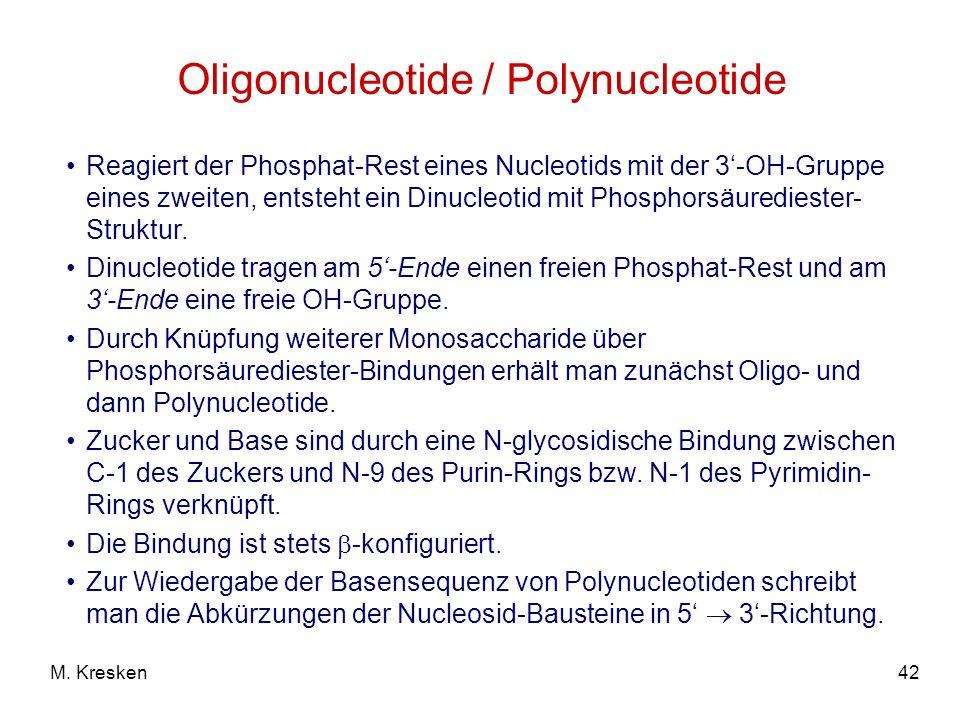 42M. Kresken Oligonucleotide / Polynucleotide Reagiert der Phosphat-Rest eines Nucleotids mit der 3-OH-Gruppe eines zweiten, entsteht ein Dinucleotid