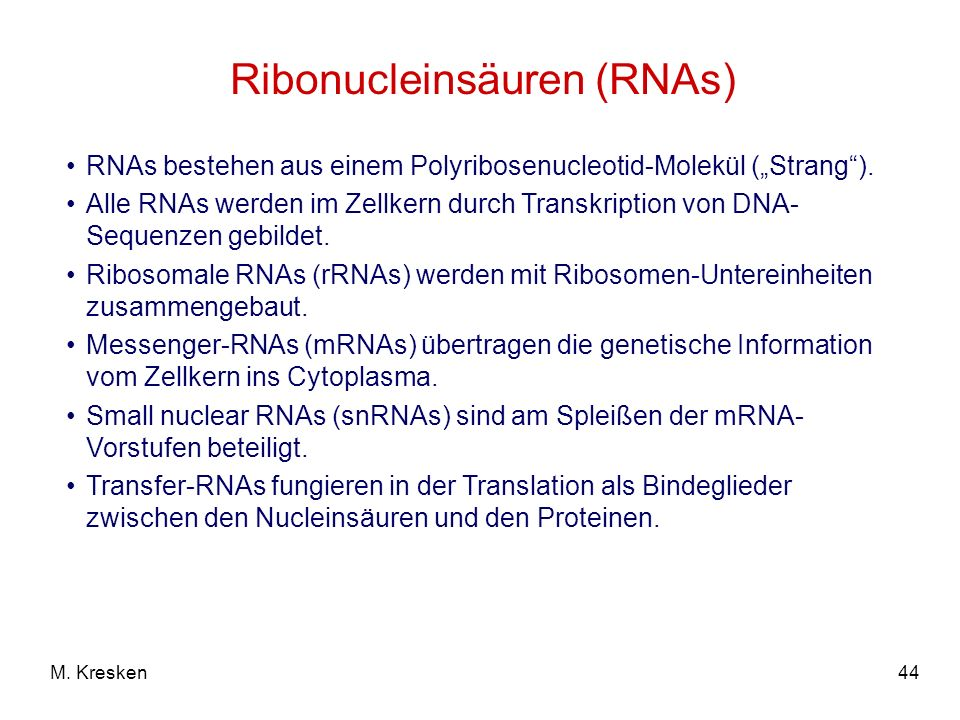 44M. Kresken Ribonucleinsäuren (RNAs) RNAs bestehen aus einem Polyribosenucleotid-Molekül (Strang). Alle RNAs werden im Zellkern durch Transkription v