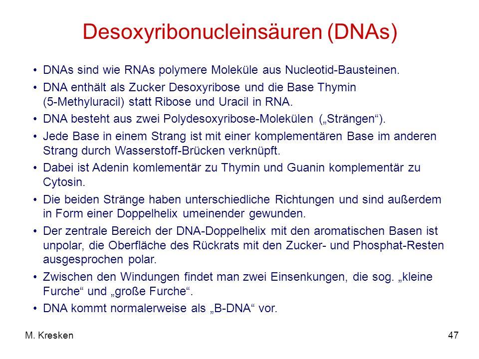 47M. Kresken Desoxyribonucleinsäuren (DNAs) DNAs sind wie RNAs polymere Moleküle aus Nucleotid-Bausteinen. DNA enthält als Zucker Desoxyribose und die