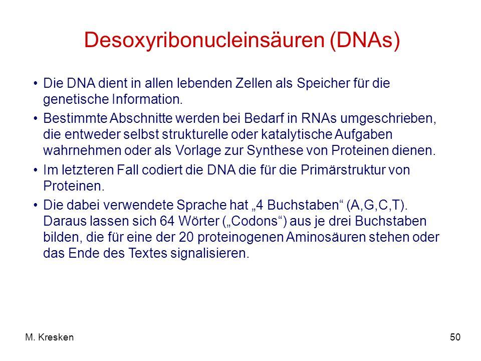 50M. Kresken Desoxyribonucleinsäuren (DNAs) Die DNA dient in allen lebenden Zellen als Speicher für die genetische Information. Bestimmte Abschnitte w