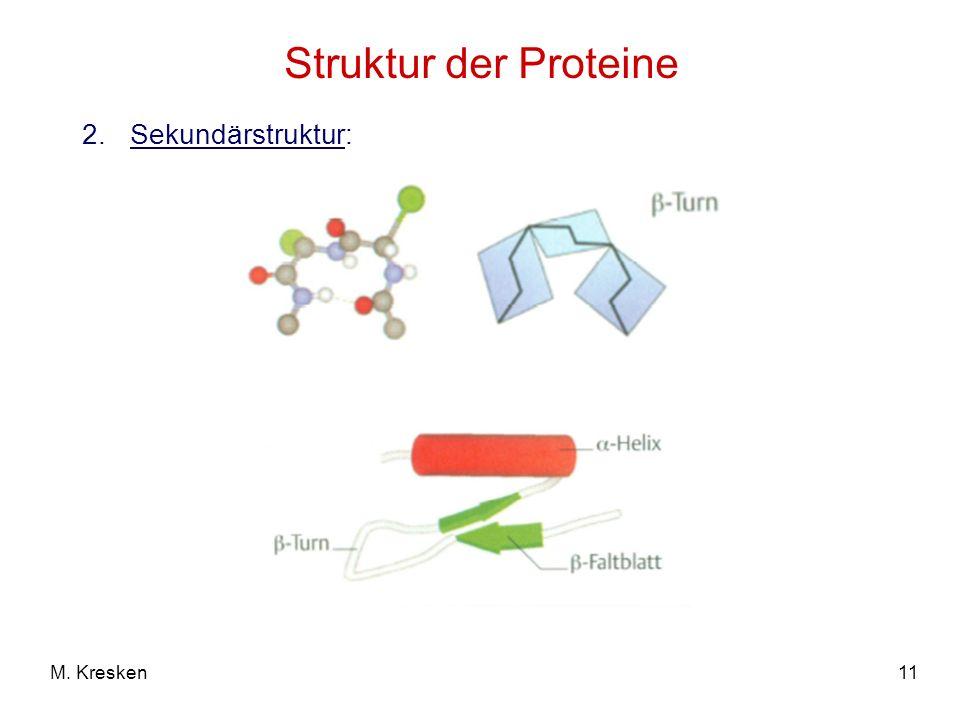 11M. Kresken Struktur der Proteine 2.Sekundärstruktur:
