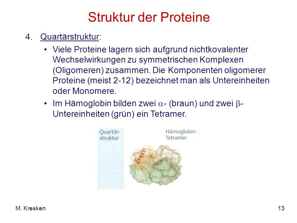 13M. Kresken Struktur der Proteine 4.Quartärstruktur: Viele Proteine lagern sich aufgrund nichtkovalenter Wechselwirkungen zu symmetrischen Komplexen