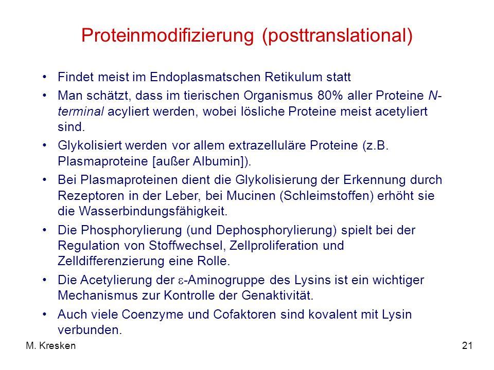 21M. Kresken Proteinmodifizierung (posttranslational) Findet meist im Endoplasmatschen Retikulum statt Man schätzt, dass im tierischen Organismus 80%