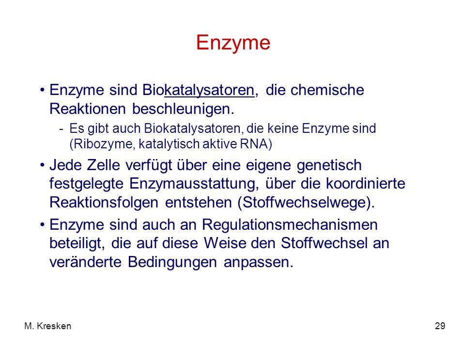 29M. Kresken Enzyme Enzyme sind Biokatalysatoren, die chemische Reaktionen beschleunigen. -Es gibt auch Biokatalysatoren, die keine Enzyme sind (Riboz