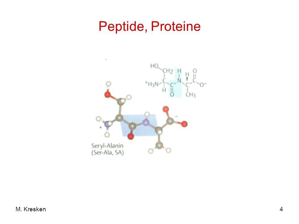 4M. Kresken Peptide, Proteine