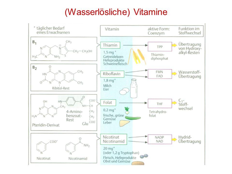 (Wasserlösliche) Vitamine