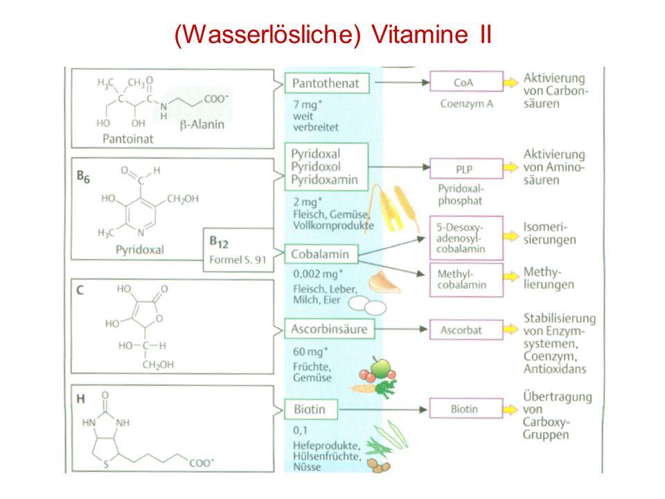 (Wasserlösliche) Vitamine II