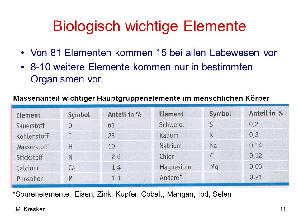 11M. Kresken Biologisch wichtige Elemente Von 81 Elementen kommen 15 bei allen Lebewesen vor 8-10 weitere Elemente kommen nur in bestimmten Organismen