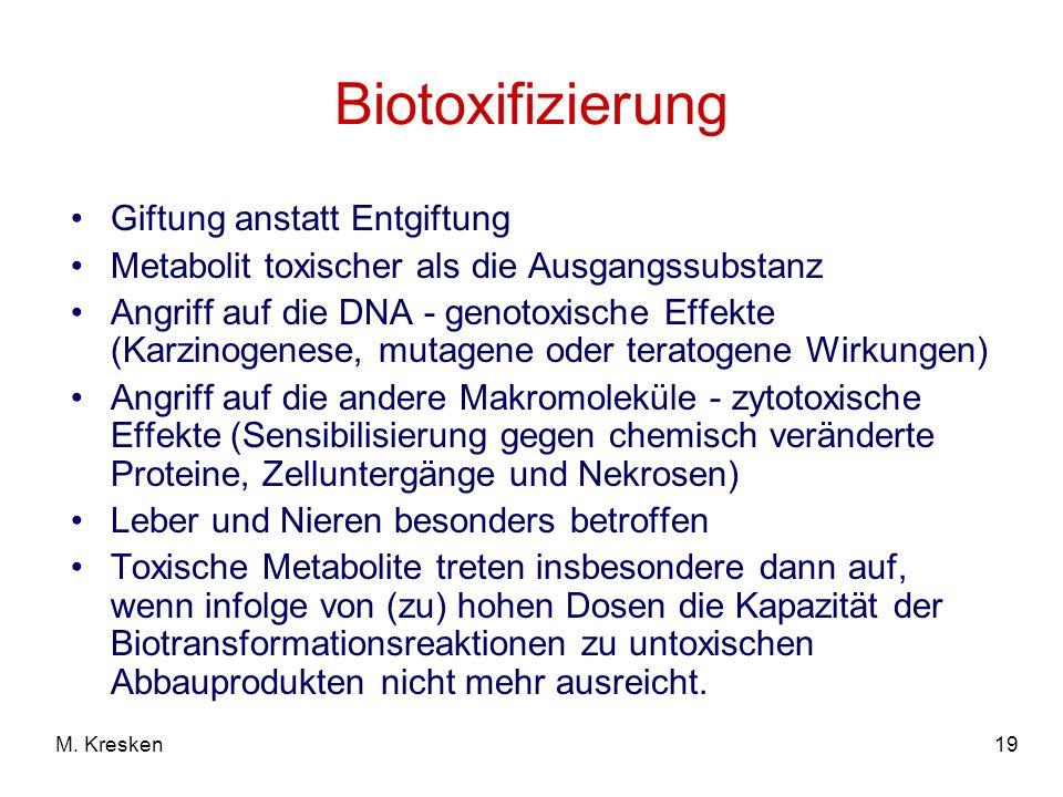 19M. Kresken Biotoxifizierung Giftung anstatt Entgiftung Metabolit toxischer als die Ausgangssubstanz Angriff auf die DNA - genotoxische Effekte (Karz