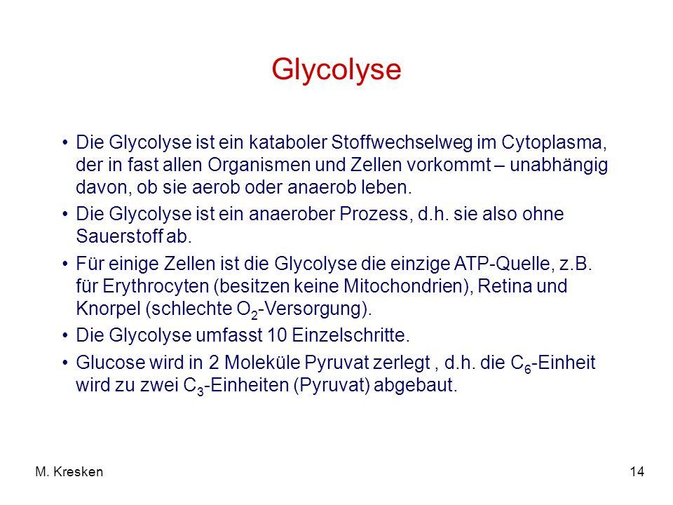 14M. Kresken Glycolyse Die Glycolyse ist ein kataboler Stoffwechselweg im Cytoplasma, der in fast allen Organismen und Zellen vorkommt – unabhängig da