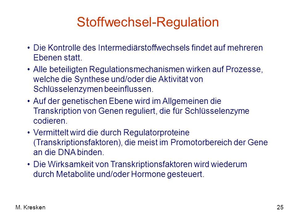 25M. Kresken Stoffwechsel-Regulation Die Kontrolle des Intermediärstoffwechsels findet auf mehreren Ebenen statt. Alle beteiligten Regulationsmechanis