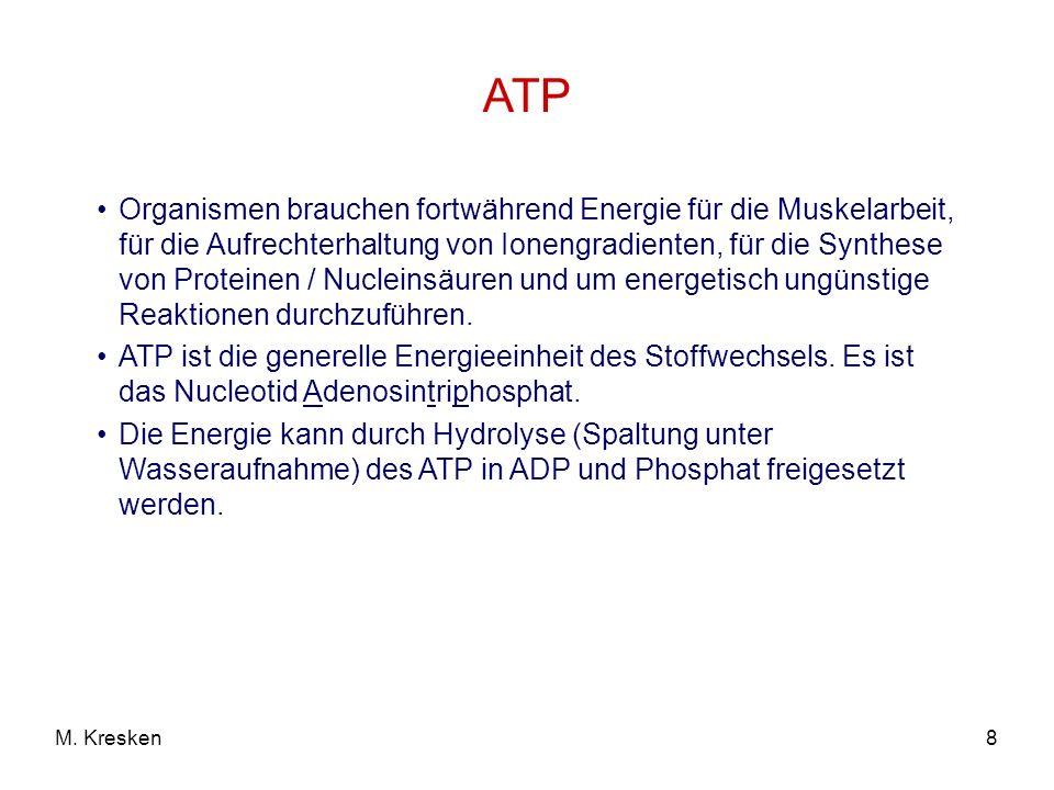 8M. Kresken ATP Organismen brauchen fortwährend Energie für die Muskelarbeit, für die Aufrechterhaltung von Ionengradienten, für die Synthese von Prot