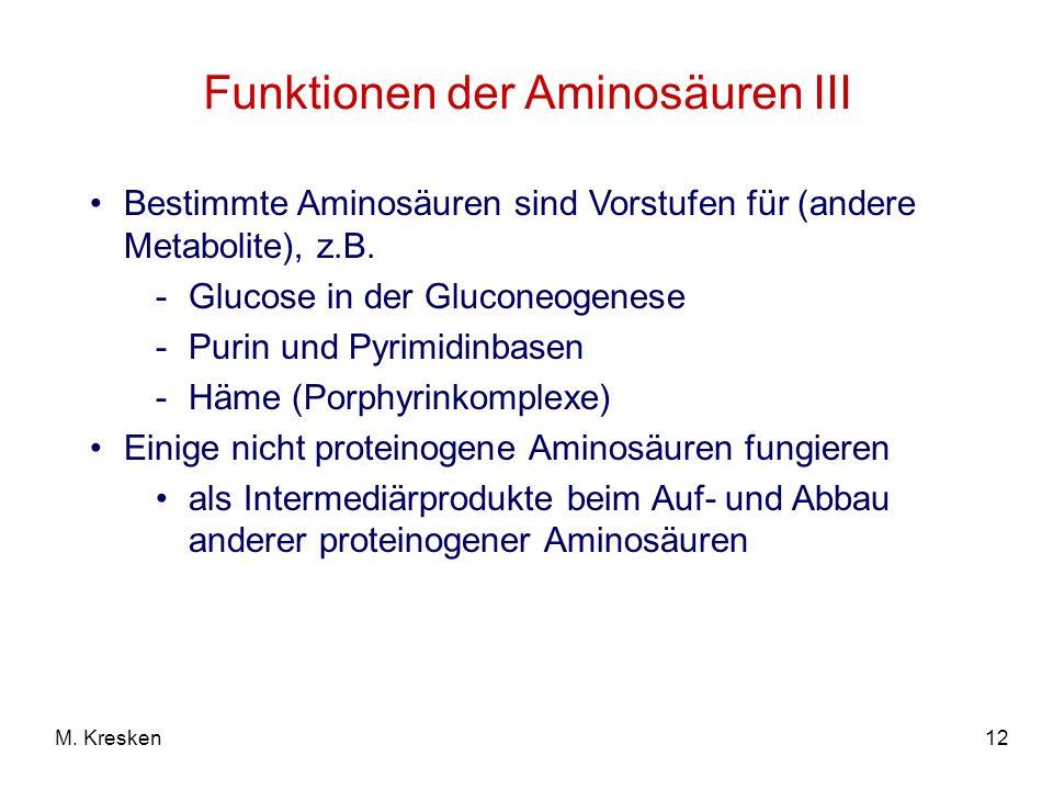 12M. Kresken Funktionen der Aminosäuren III Bestimmte Aminosäuren sind Vorstufen für (andere Metabolite), z.B. -Glucose in der Gluconeogenese -Purin u