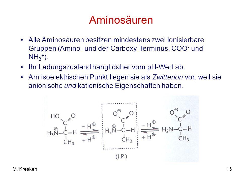 13M. Kresken Aminosäuren Alle Aminosäuren besitzen mindestens zwei ionisierbare Gruppen (Amino- und der Carboxy-Terminus, COO - und NH 3 + ). Ihr Ladu
