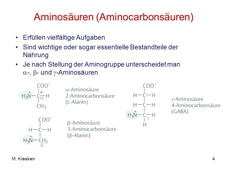 4M. Kresken Aminosäuren (Aminocarbonsäuren) Erfüllen vielfältige Aufgaben Sind wichtige oder sogar essentielle Bestandteile der Nahrung Je nach Stellu