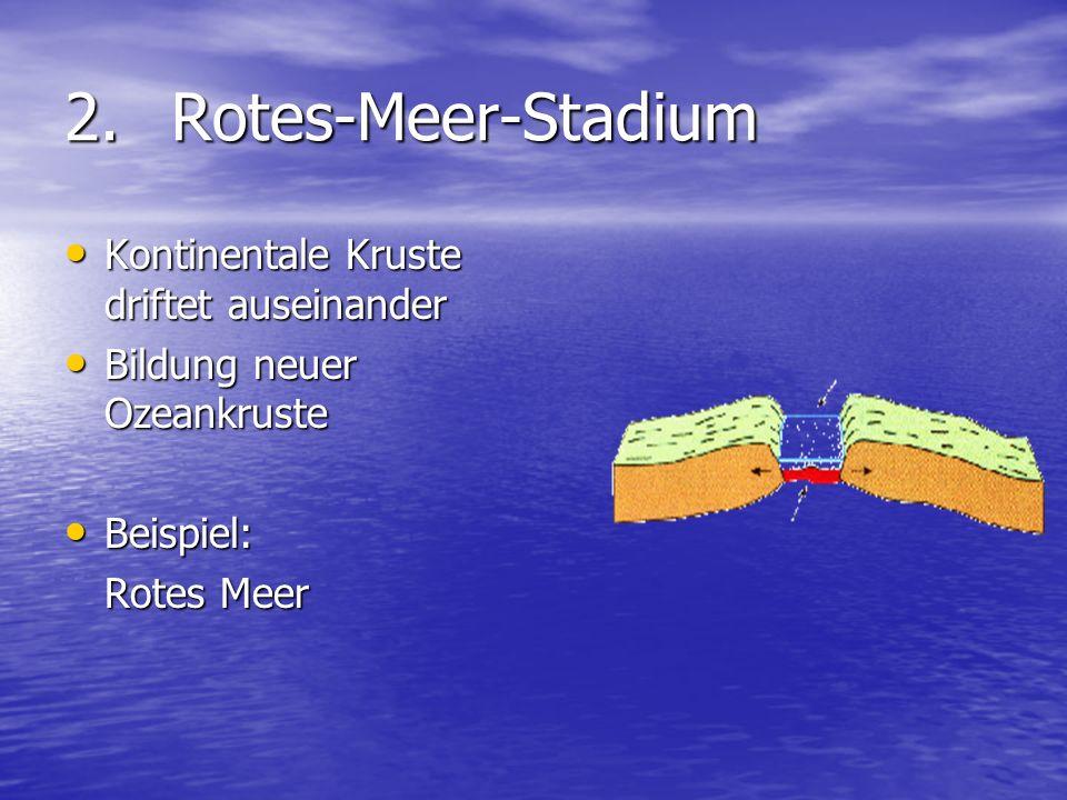 2.Rotes-Meer-Stadium Kontinentale Kruste driftet auseinander Kontinentale Kruste driftet auseinander Bildung neuer Ozeankruste Bildung neuer Ozeankrus